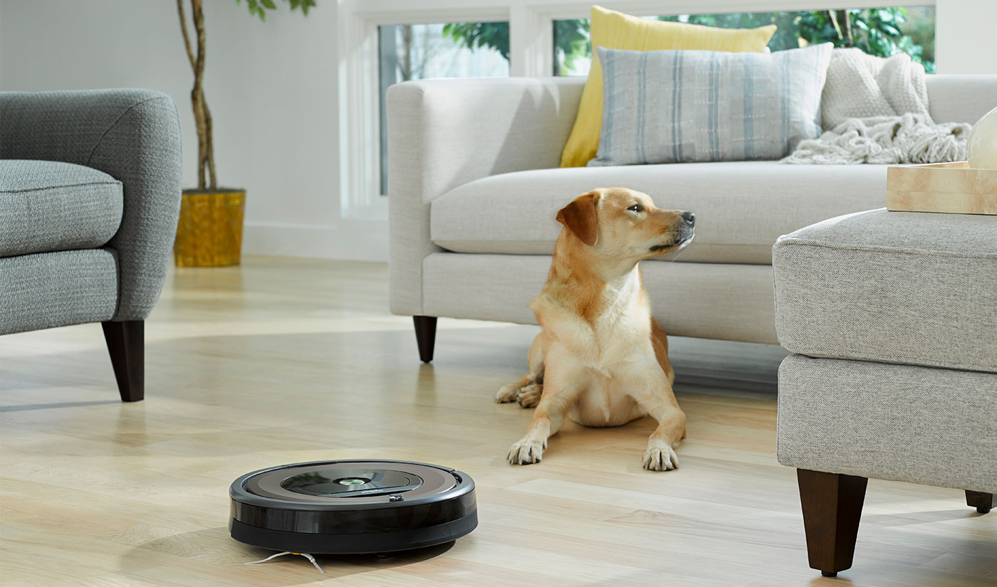 Roomba in living room