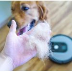 Best Robot Vacuum for Pet Hair: Get Away From Hairy Problem